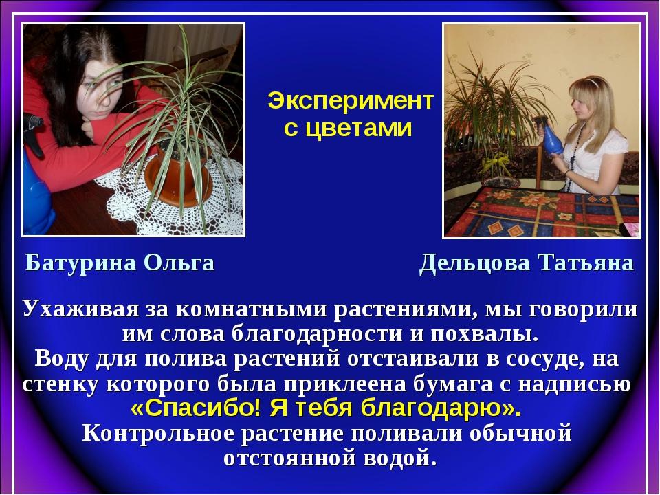 Эксперимент с цветами Батурина Ольга Дельцова Татьяна Ухаживая за комнатными...