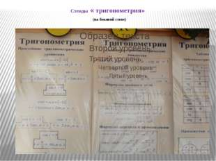Стенды « тригонометрия» (на боковой стене)