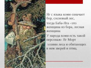 Яг с языка коми означает бор, сосновый лес, тогда Баба-Яга –это женщина из бо