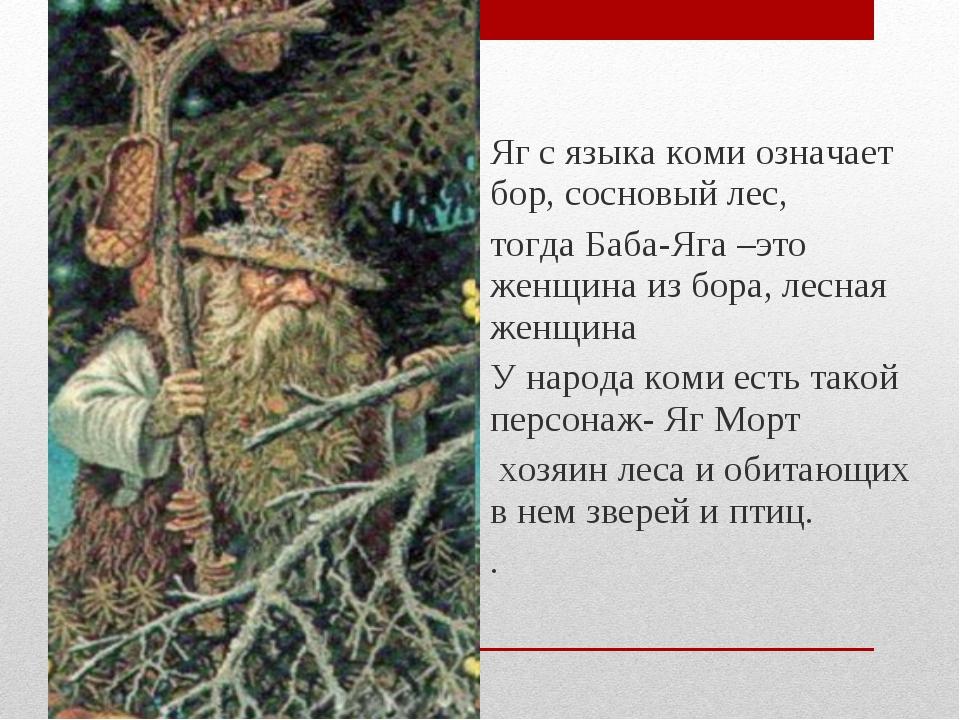 Яг с языка коми означает бор, сосновый лес, тогда Баба-Яга –это женщина из бо...