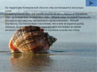 На территории Кемеровской области озёр насчитывается несколько сотен. Самым к