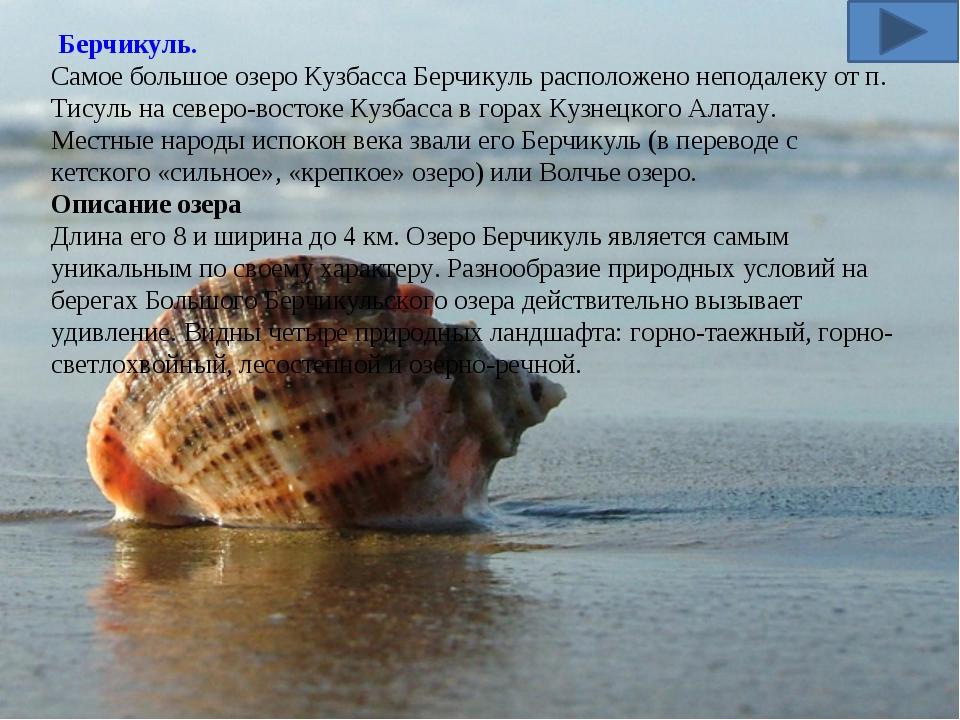 Берчикуль. Самое большое озеро Кузбасса Берчикуль расположенонеподалекуот...