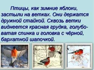 Птицы, как зимние яблоки, застыли на ветках. Они держатся дружной стайкой. С