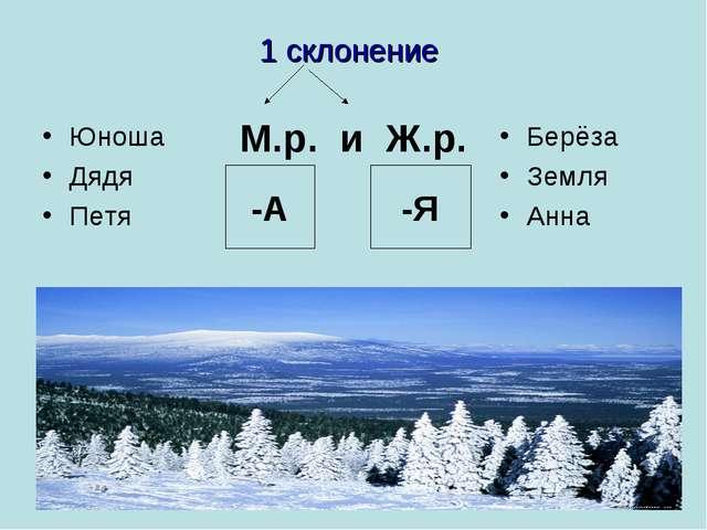 1 склонение -А -Я М.р. и Ж.р. Юноша Дядя Петя Берёза Земля Анна