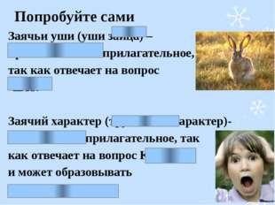 Попробуйте сами Заячьи уши (уши зайца) – притяжательное прилагательное, так к