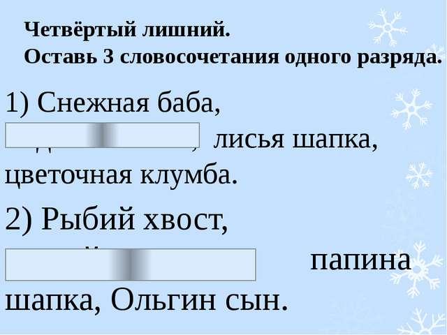 Четвёртый лишний. Оставь 3 словосочетания одного разряда. 1) Снежная баба, ме...