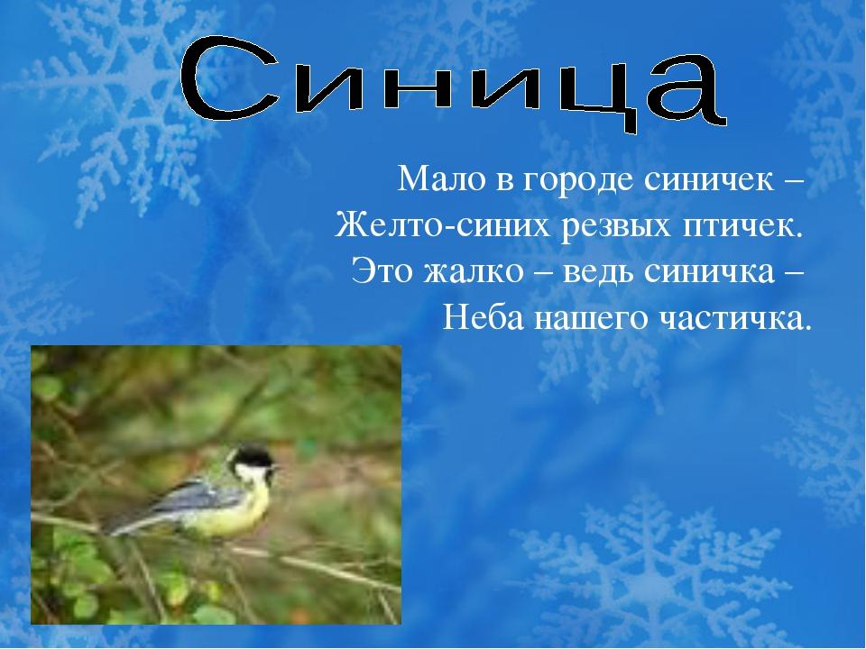 Мало в городе синичек – Желто-синих резвых птичек. Это жалко – ведь синичка –...