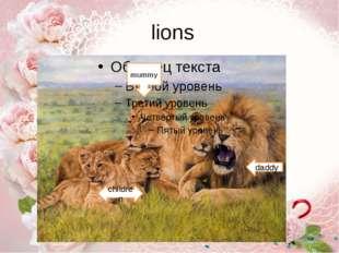 lions daddy mummy children