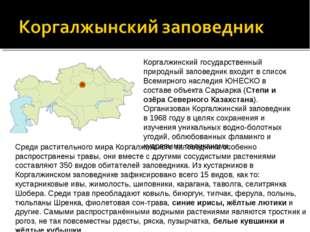 Коргалжинский государственный природный заповедник входит в список Всемирного