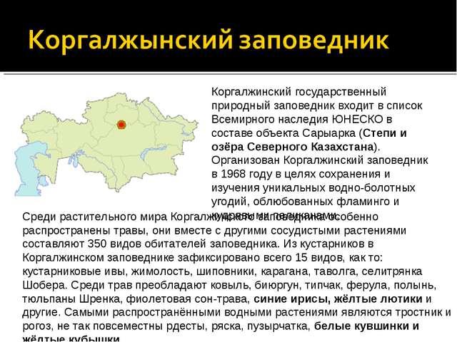 Коргалжинский государственный природный заповедник входит в список Всемирного...