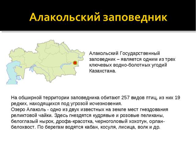 Алакольский Государственный заповедник – является одним из трех ключевых водн...