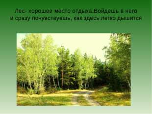 Лес- хорошее место отдыха.Войдешь в него и сразу почувствуешь, как здесь легк