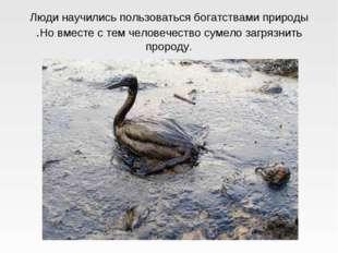 Люди научились пользоваться богатствами природы .Но вместе с тем человечество