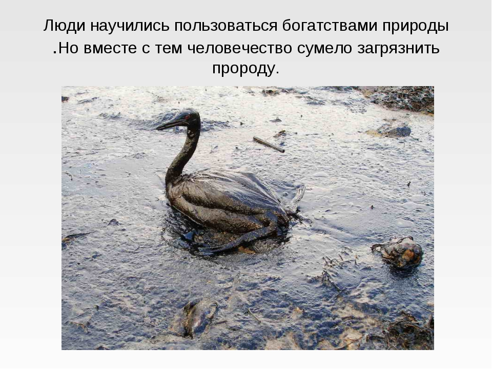 Люди научились пользоваться богатствами природы .Но вместе с тем человечество...