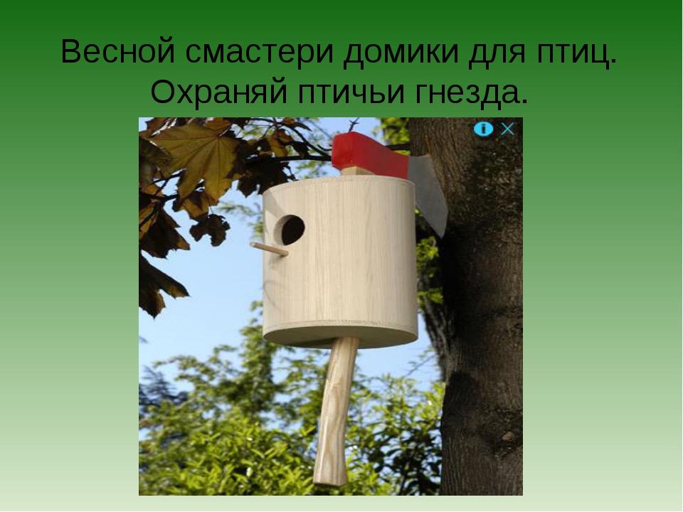 Весной смастери домики для птиц. Охраняй птичьи гнезда.