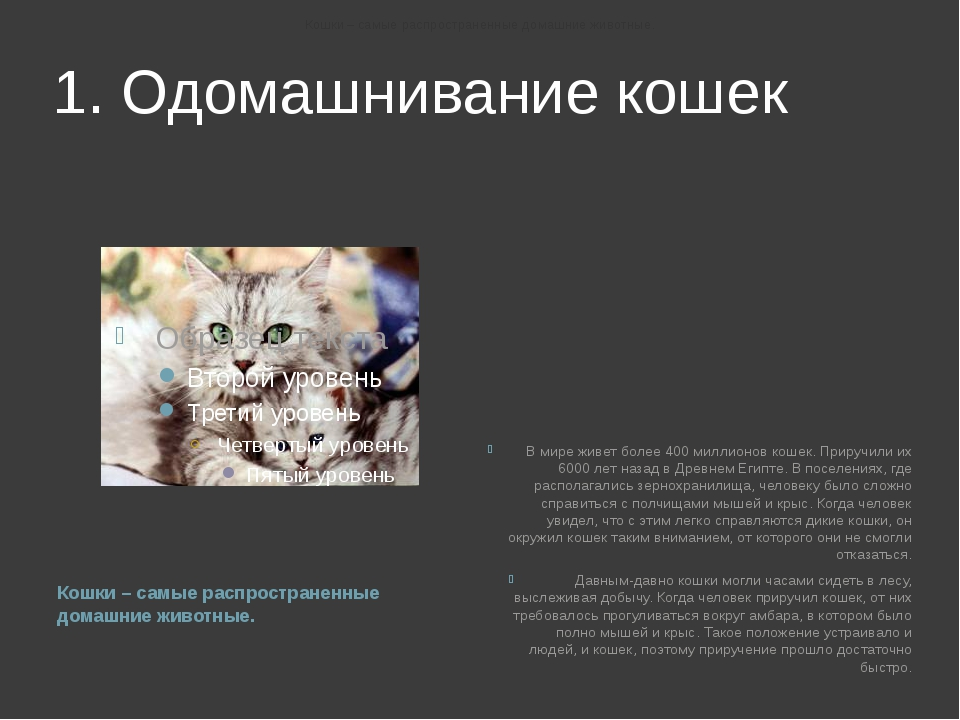 1. Одомашнивание кошек Кошки – самые распространенные домашние животные. В ми...