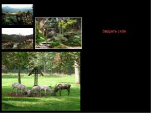 Особо охраняемые территории Чехия – страна разнообразных живописных ландшафто