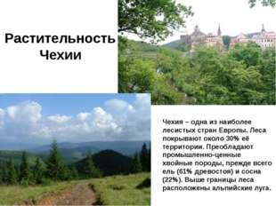 Рaстительность Чехии Чехия – одна из наиболее лесистых стран Европы. Леса пок