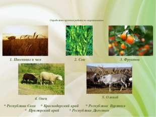 Определите крупные районы по выращиванию * Республика Саха * Краснодарский к