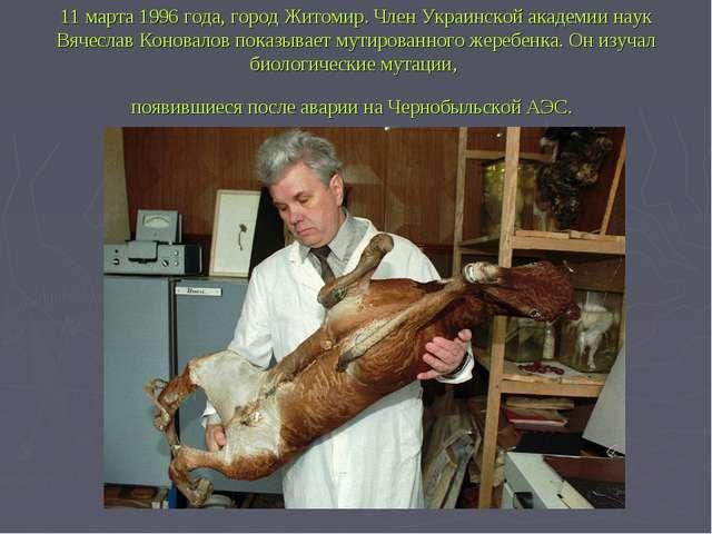 11 марта 1996 года, город Житомир. Член Украинской академии наук Вячеслав Кон...