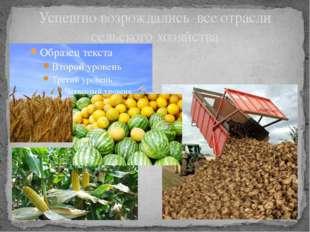 Успешно возрождались все отрасли сельского хозяйства