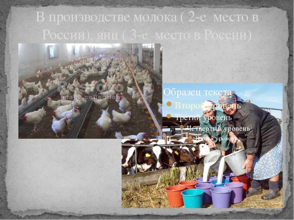 В производстве молока ( 2-е место в России), яиц ( 3-е место в России)