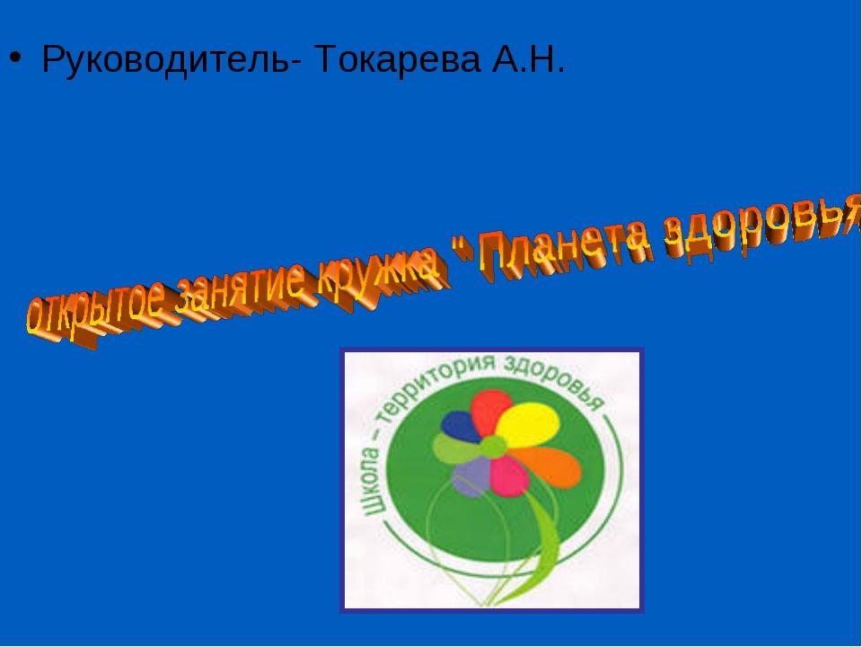 Руководитель- Токарева А.Н.