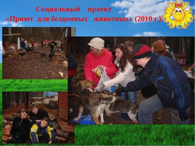 Социальный проект «Приют для бездомных животных» (2010 г.)