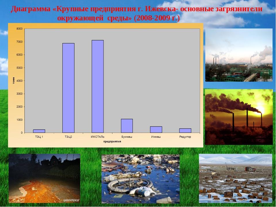 Диаграмма «Крупные предприятия г. Ижевска- основные загрязнители окружающей с...
