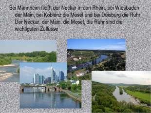 Bei Mannheim fließt der Neckar in den Rhein, bei Wiesbaden der Main, bei Kobl