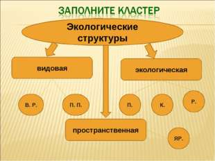 Экологические структуры видовая пространственная экологическая В. Р. П. П. П.
