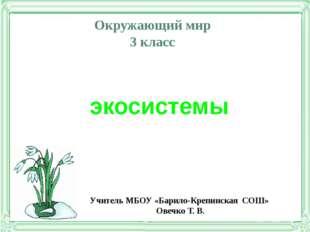 Окружающий мир 3 класс экосистемы Учитель МБОУ «Барило-Крепинская СОШ» Овечко