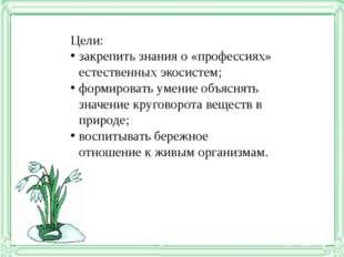 Цели: закрепить знания о «профессиях» естественных экосистем; формировать уме