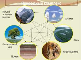 Природный комплекс Климат Воды Животный мир Почвы Растительный мир Рельеф и г