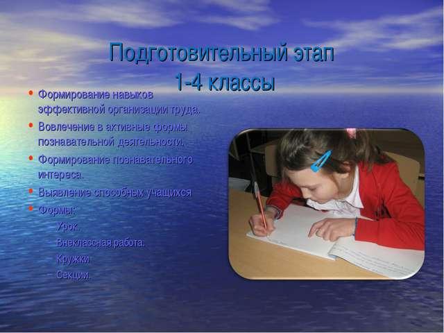 Подготовительный этап 1-4 классы Формирование навыков эффективной организаци...
