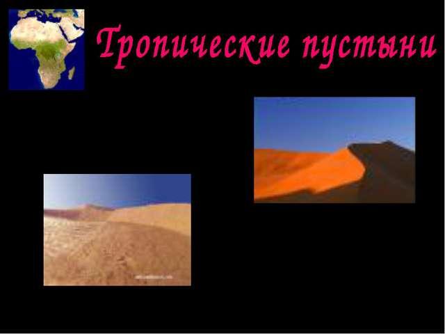 Занимают огромную площадь. На долю пустынь приходится большая площадь материк...