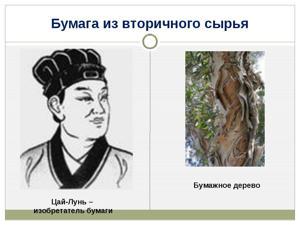 Бумага из вторичного сырья Цай-Лунь – изобретатель бумаги Бумажное дерево