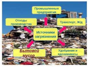 Источники загрязнения Отходы производства Удобрения и ядохимикаты Транспорт,