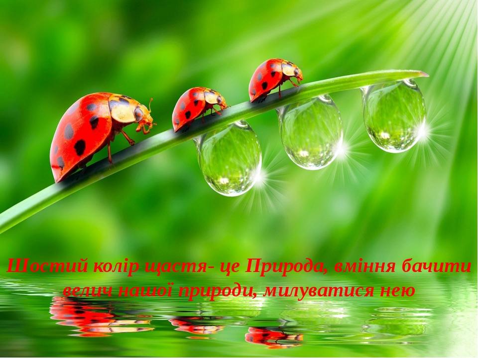 Шостий колір щастя- це Природа, вміння бачити велич нашої природи, милуватися...