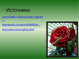 Источники: ped-kopilka.ru/raznoe/sad-i-ogorod/... liveinternet.ru/users/50360