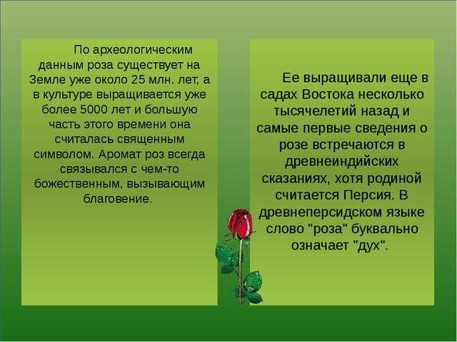 По археологическим данным роза существует на Земле уже около 25 млн. лет, а...