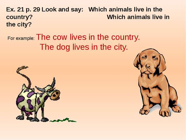 Ex. 21 p. 29 Look and say:	Which animals live in the country? 				Which anima...