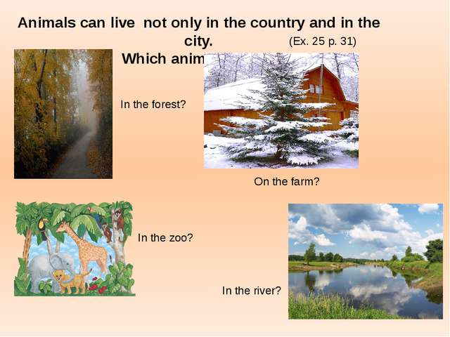 Animals can live not only in the country and in the city. Which animals live...