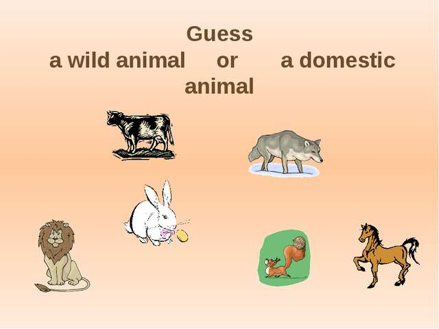 Guess a wild animal or a domestic animal