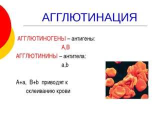 АГГЛЮТИНАЦИЯ АГГЛЮТИНОГЕНЫ – антигены: А,В АГГЛЮТИНИНЫ – антитела: a,b А+а,
