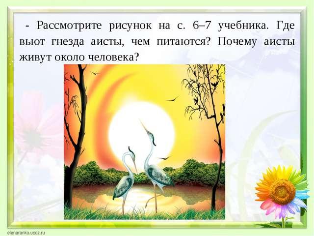 - Рассмотрите рисунок на с. 6–7 учебника. Где вьют гнезда аисты, чем питаются...