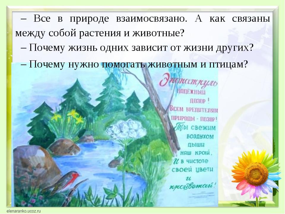 – Все в природе взаимосвязано. А как связаны между собой растения и животные?...