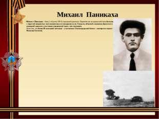 Михаил Паникаха– боец 1-ой роты 193-й стрелковой дивизии. Поднятая им на вр