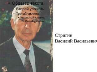 Стригин Василий Васильевич