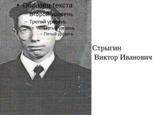 Стрыгин Виктор Иванович